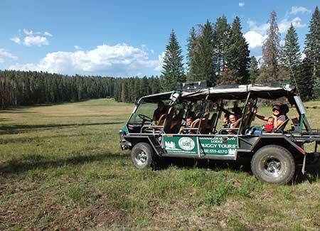 Buggy rides at Hannagan Meadow Lodge in Alpine, AZ