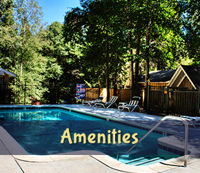 Amenities at Arrowhead Tree Top Lodge