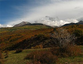 La Sal National Forest near Temple View Lodge in Manti, Utah Photo by Zephyr Glass