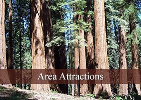 Area Attractions Near Sequoia National Park in California
