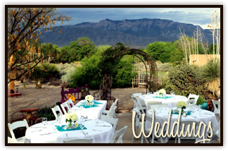 Weddings at the Chocolate Turtle in Corrales, NM