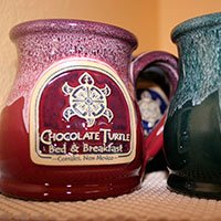 Chocolate Turtle Mug by Deneen Pottery