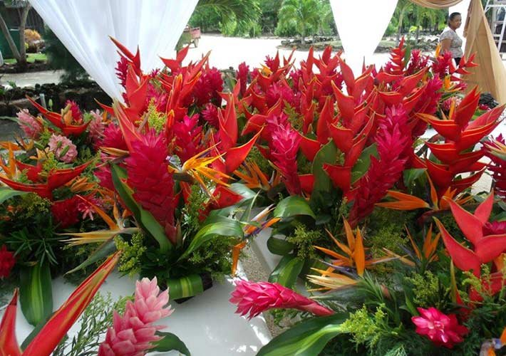 Wedding flowers at Crimson Orchid Inn in Belize
