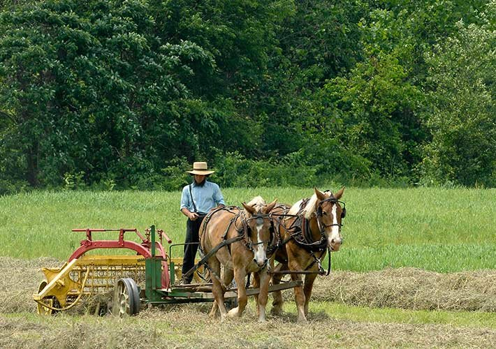 traditional farming style of Southern Wisconsin