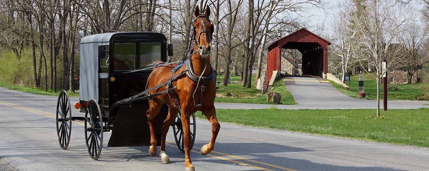Things to do in amish country shipshewana bed and for Amish country things to do