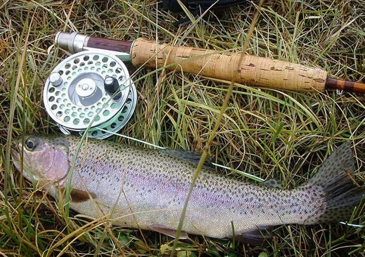 Fly fishing near Paradise Gateway in Montana