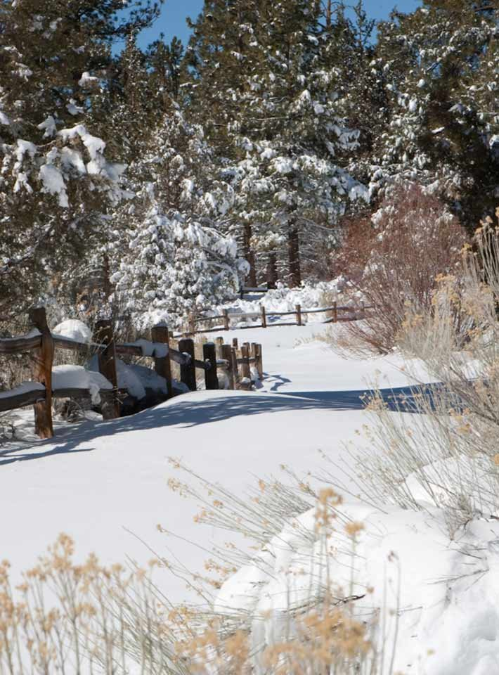 Winter at Gold Mountain Manor in Big Bear City, CA