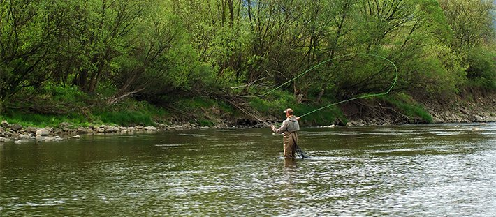 fishing, yellowstone, Area Attractions near Voss Inn in Bozeman, MT