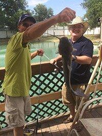 catching catfish