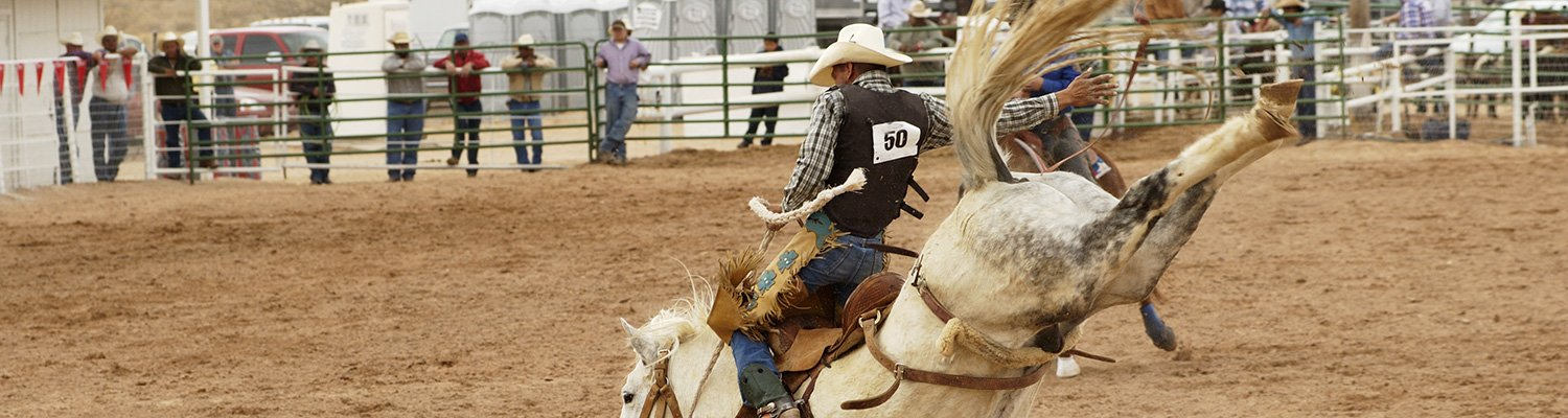 A man on a bucking horse at a rodeo