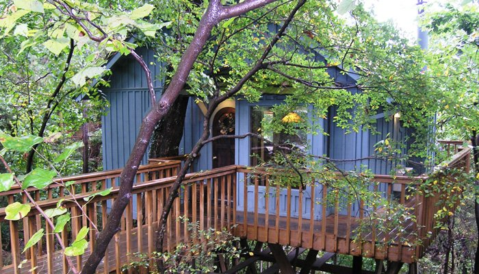 Treehouse Cottages