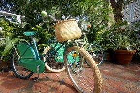 Bicycle parked on brick walkway