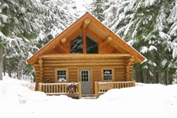 Log cabin in snowy field with trees