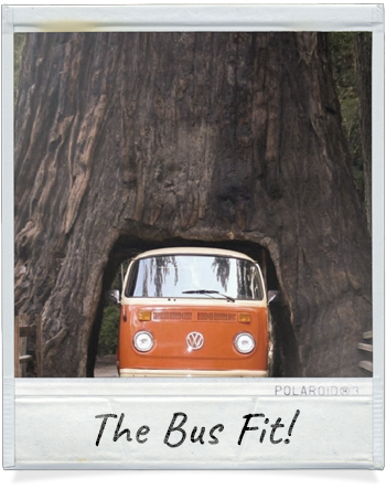 The VW Bus fit through the Redwood Tree