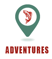 Bear Paw Adventures - Adventures