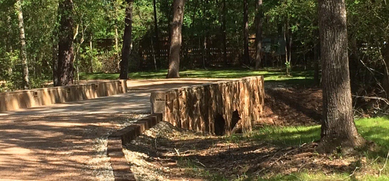 Magnolia Forest RV Park in Magnolia, Texas