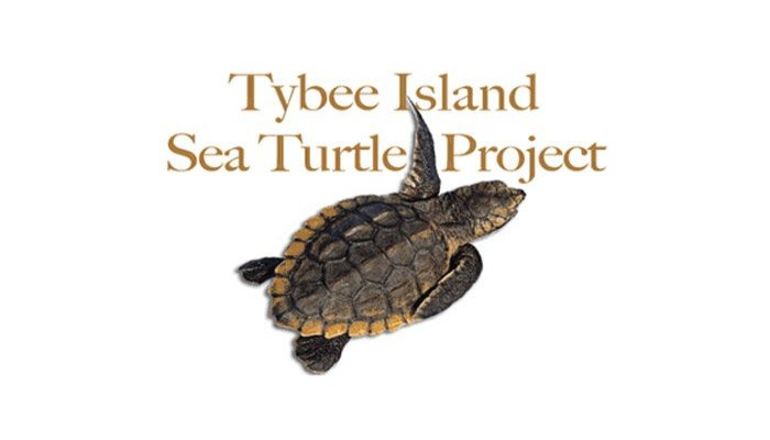 things to do near Surf Song B&B in Tybee Island, GA
