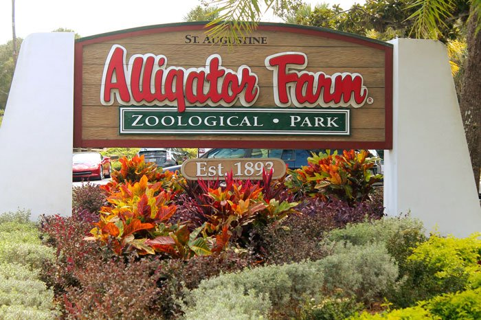 St. Augustine Alligator Farm and Zoological Park