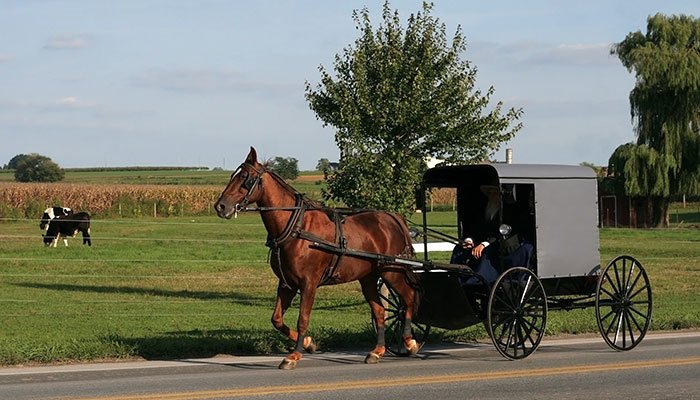 Things to do near Crest Country Inn in Williamsburg, IA