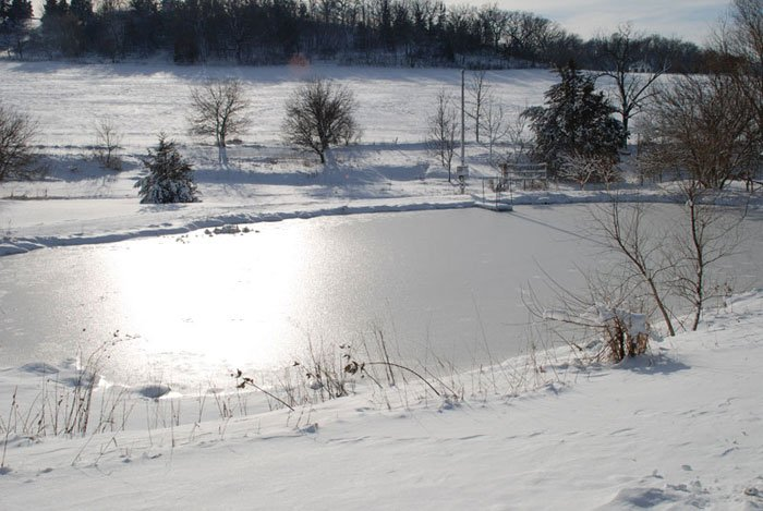 Overview of frozen pond with sun glare