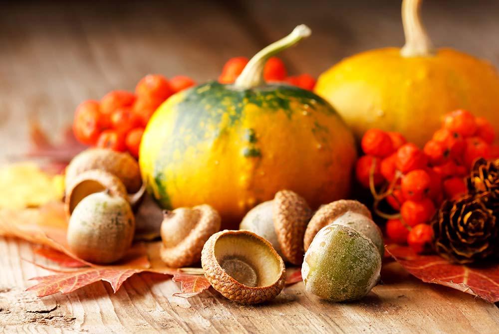 Pumpkins and acorns