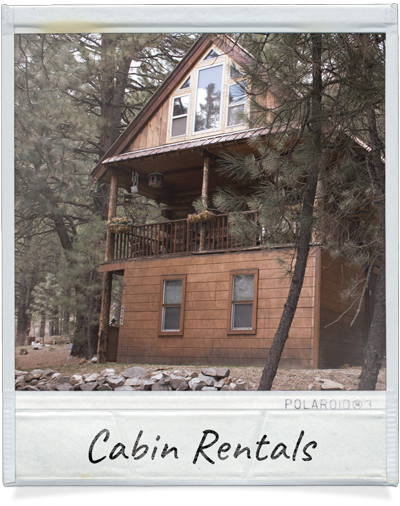Cabin Rentals at Hayhurst Bed and Breakfast