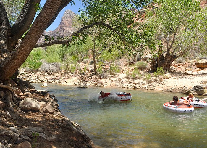 Things to do near Zion