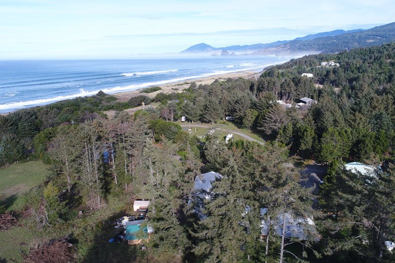 Things to do near Honey Bear by the Sea in Ophir, OR
