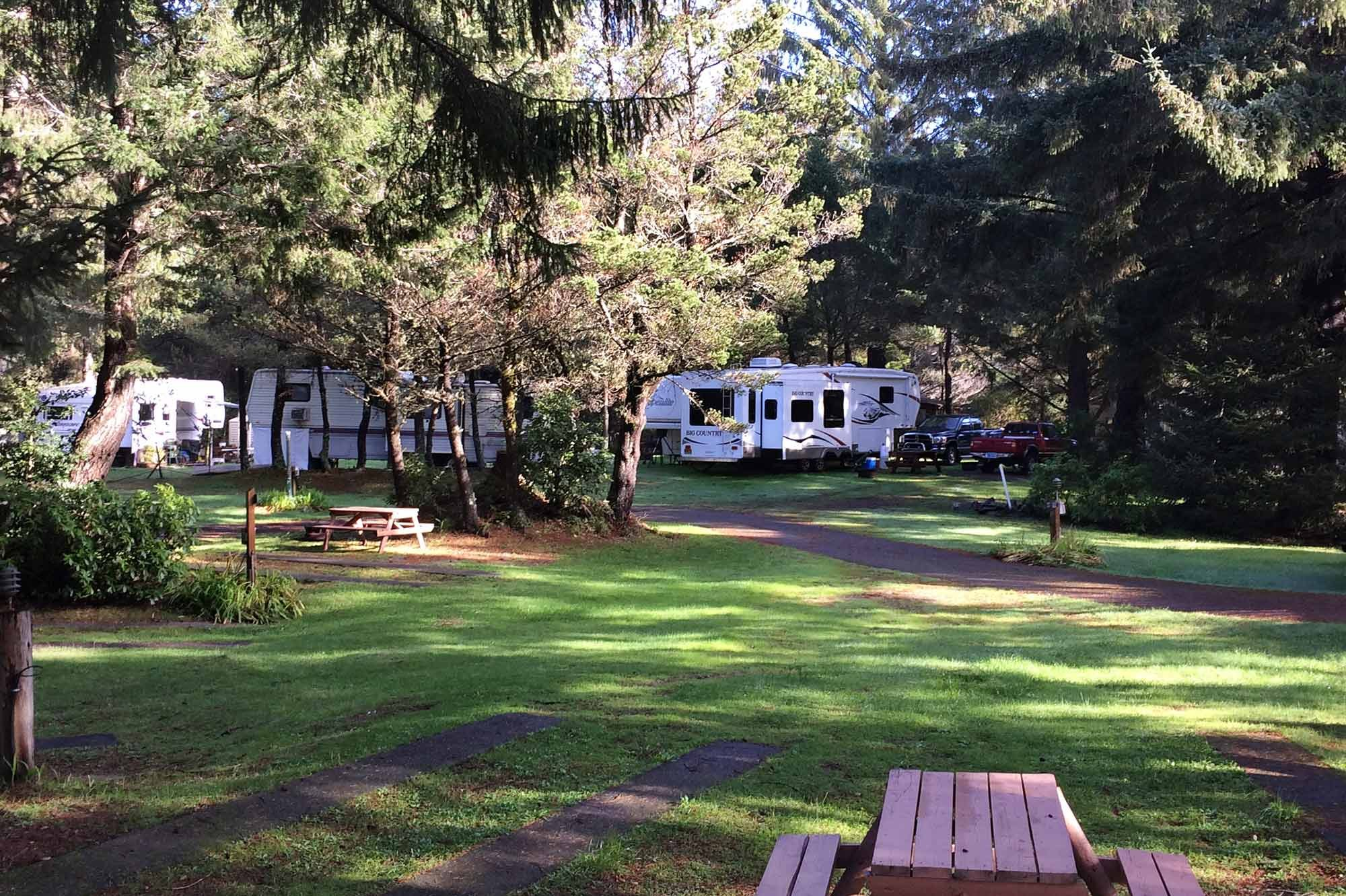 Honey Bear By The Sea Rv Resort Amp Campgrounds In Ophir Oregon