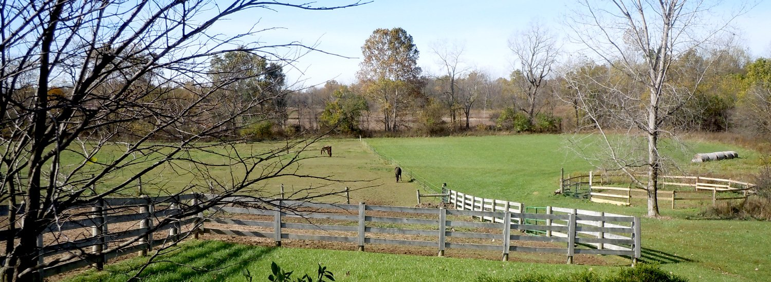 Heartland Country Resort Fredericktown Ohio B B And Stables