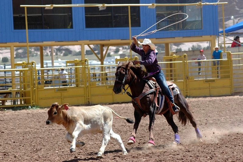 Page Lake Powell Rodeo