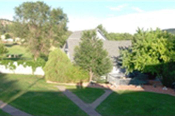 Sidewalk through yard between house and trees