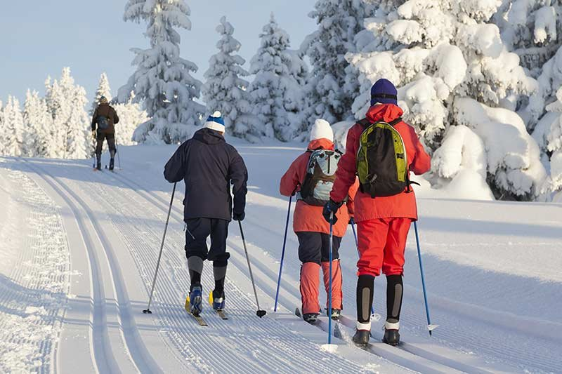 four people cross country skiing