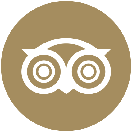 TripAdvisor link button
