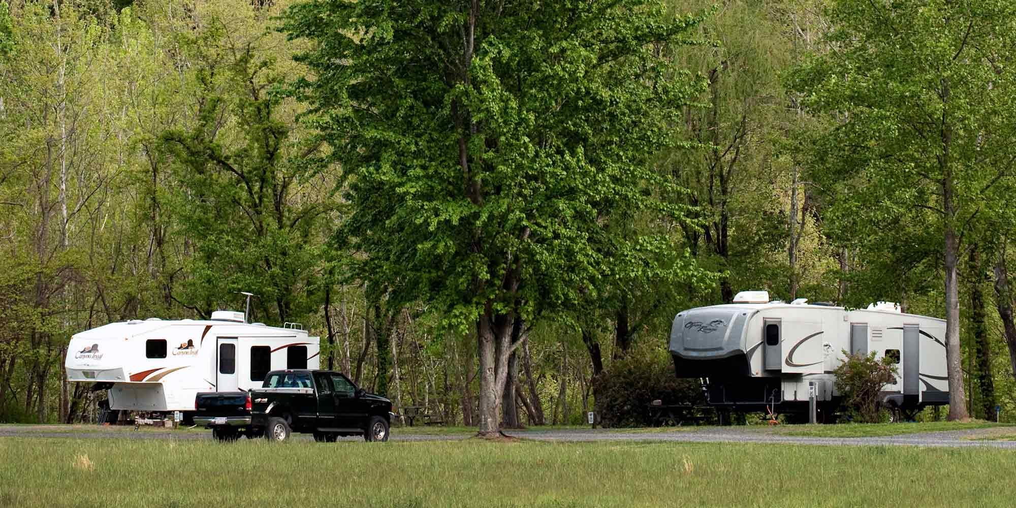 rv campers beneath trees