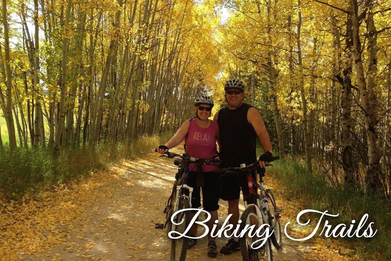 Couple with bikes on trail