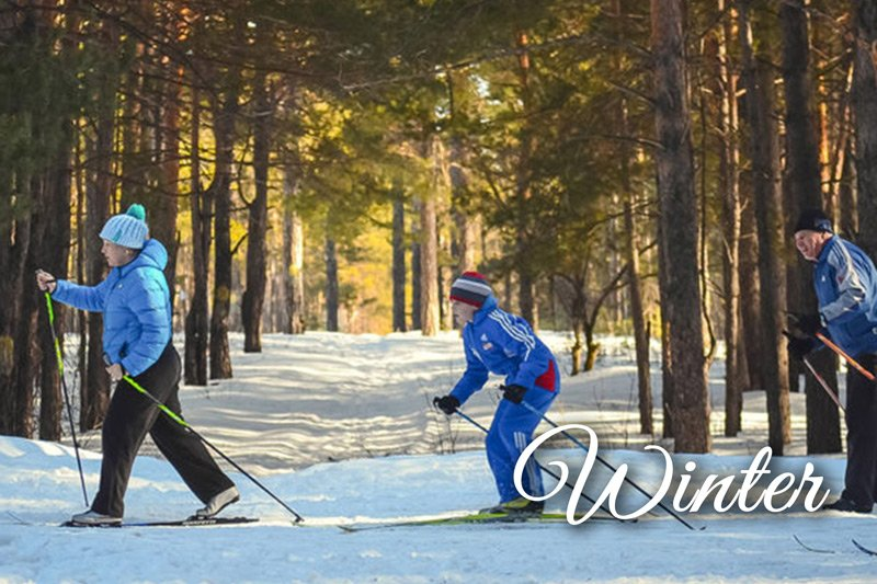 Summer Creek Inn winter attractions family cross country skiing