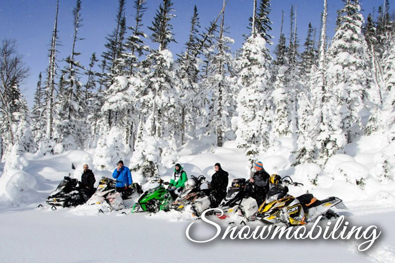Group of snowmobilers