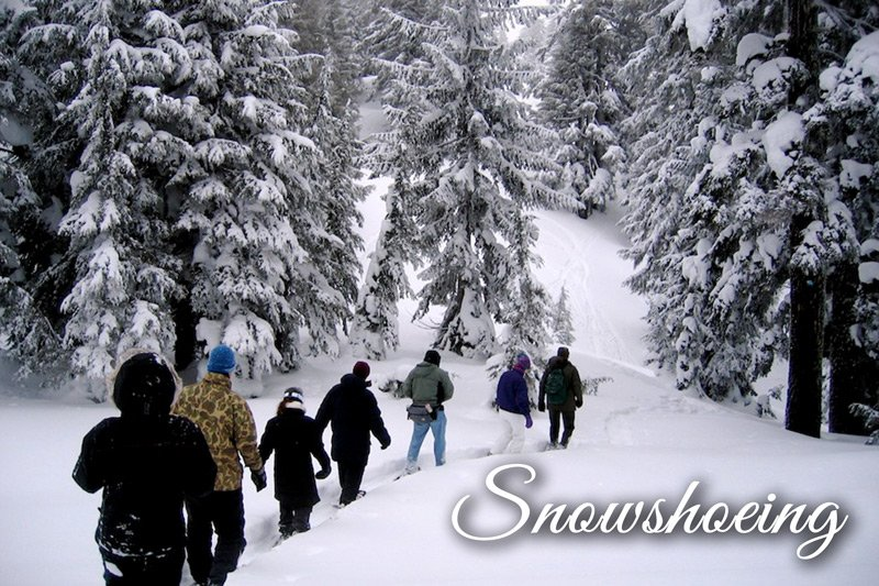 Group of people snowshoeing