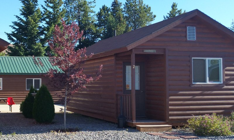 Guest Cabin with tree