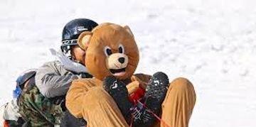 person in bear costume on toboggan