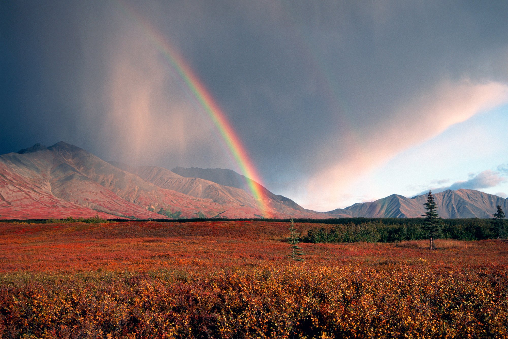 Denali National Park with rainbow