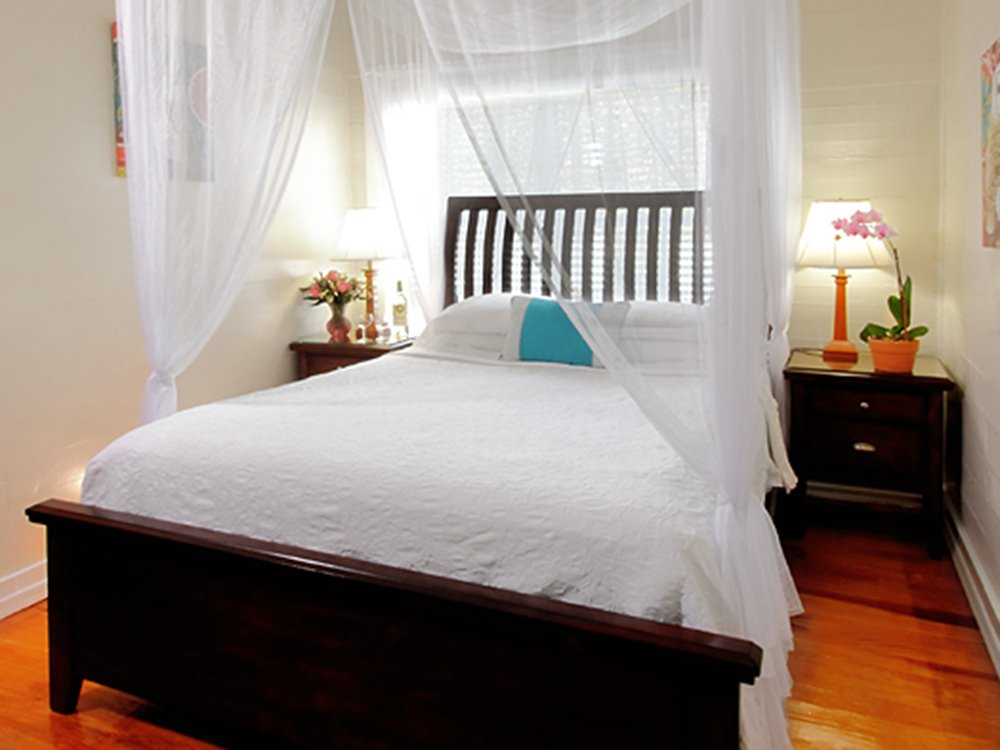 bed with white canopy