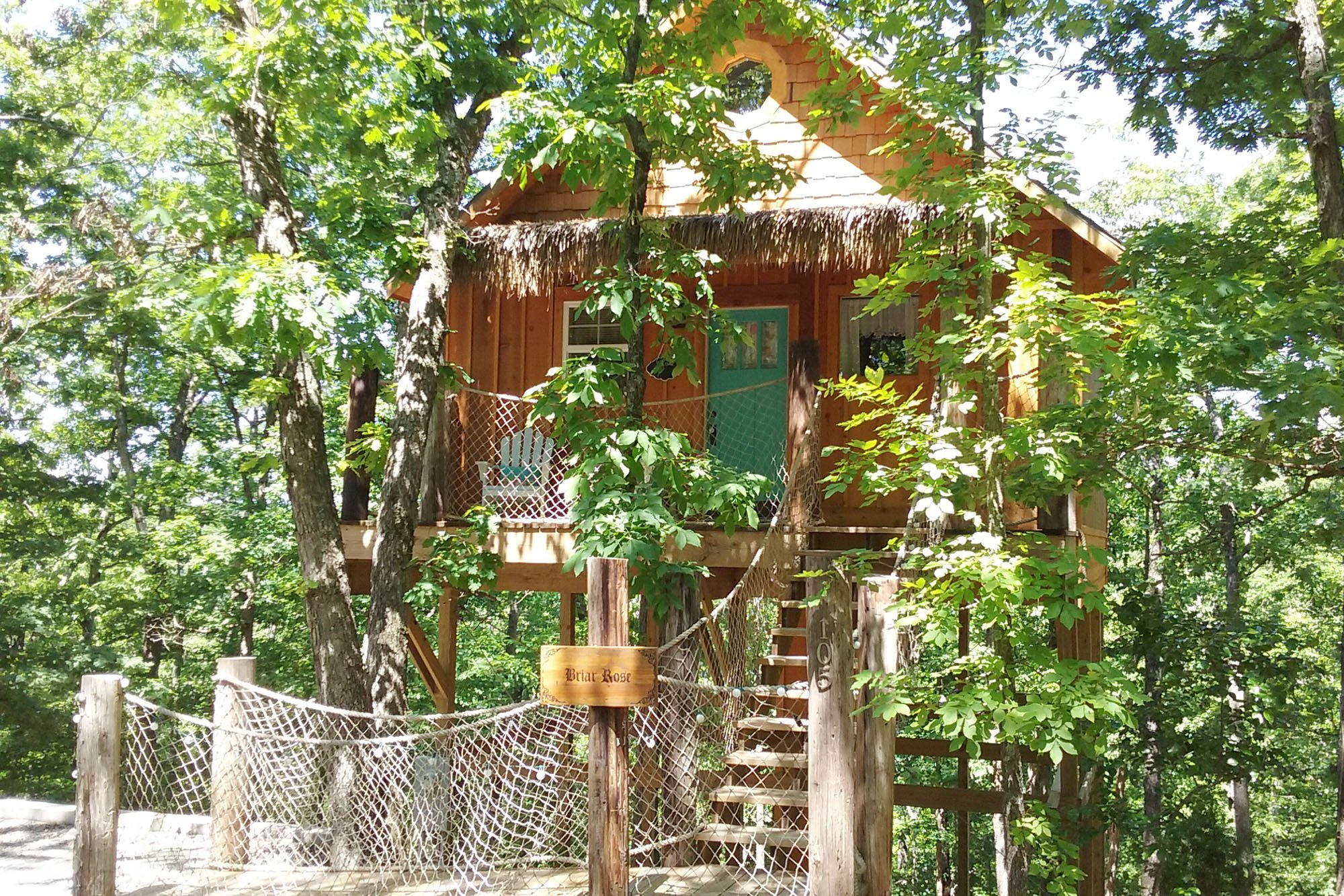 treehouse with netting and green door