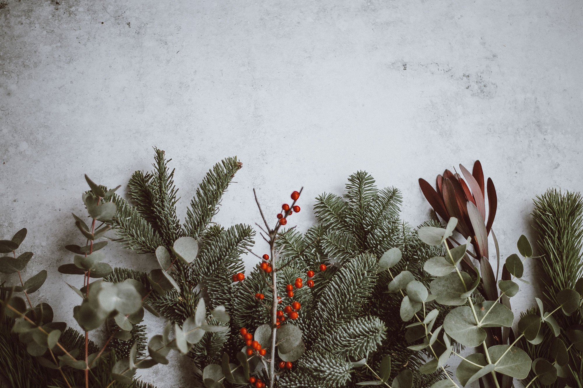 christmas boughs and branches