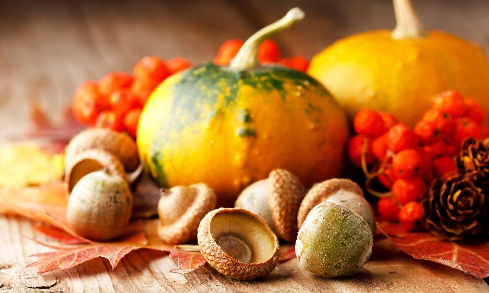 squash in fall vignette