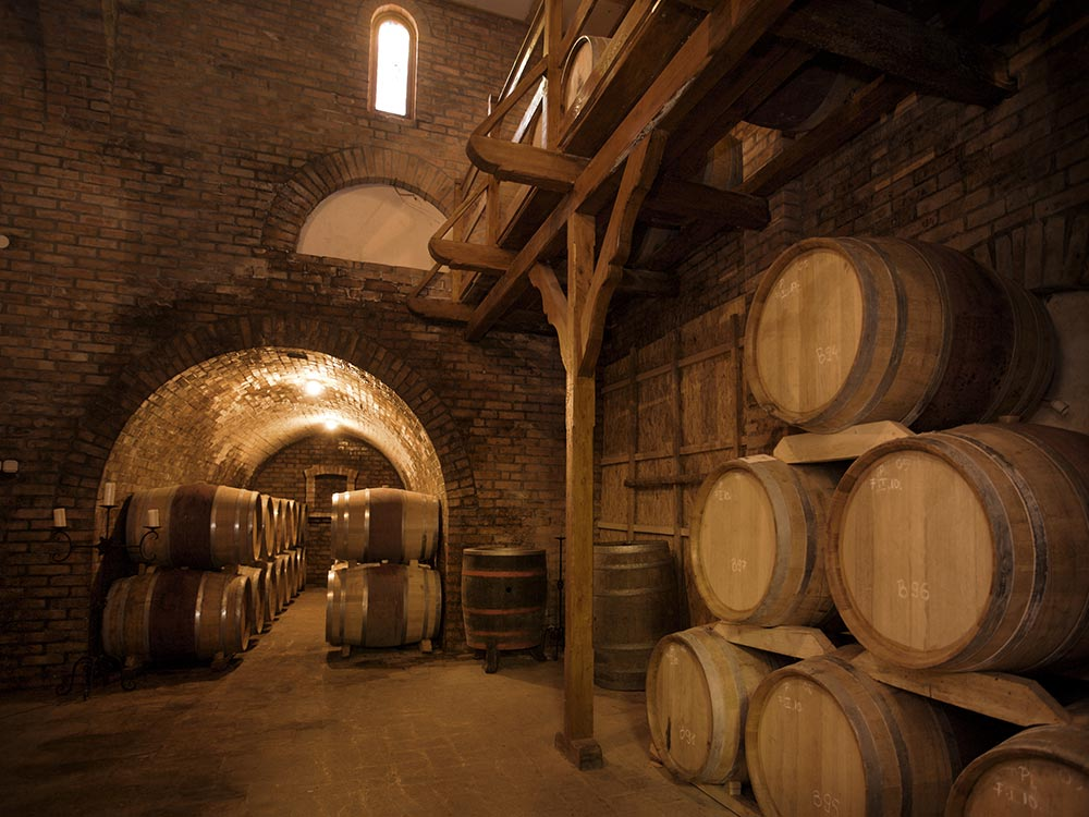 Cellar full of wine barrels