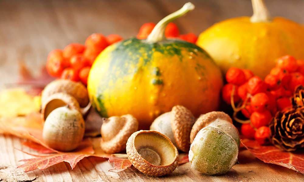 Pumpkins, acorns, and autumn leaves