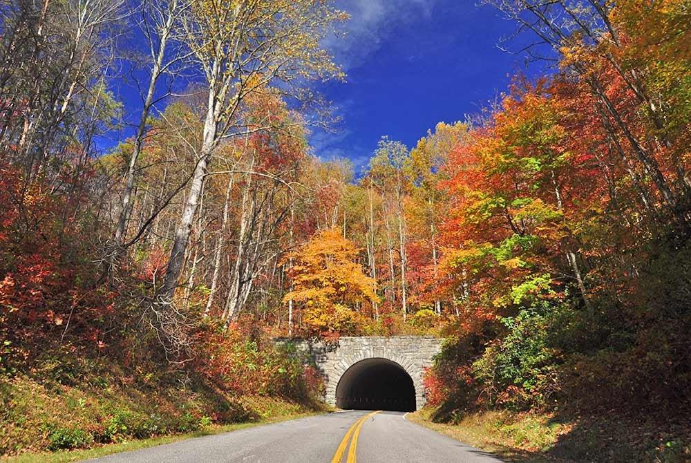 driving through scenic autumn